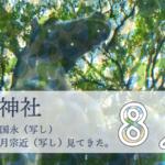 藤森神社刀剣展示